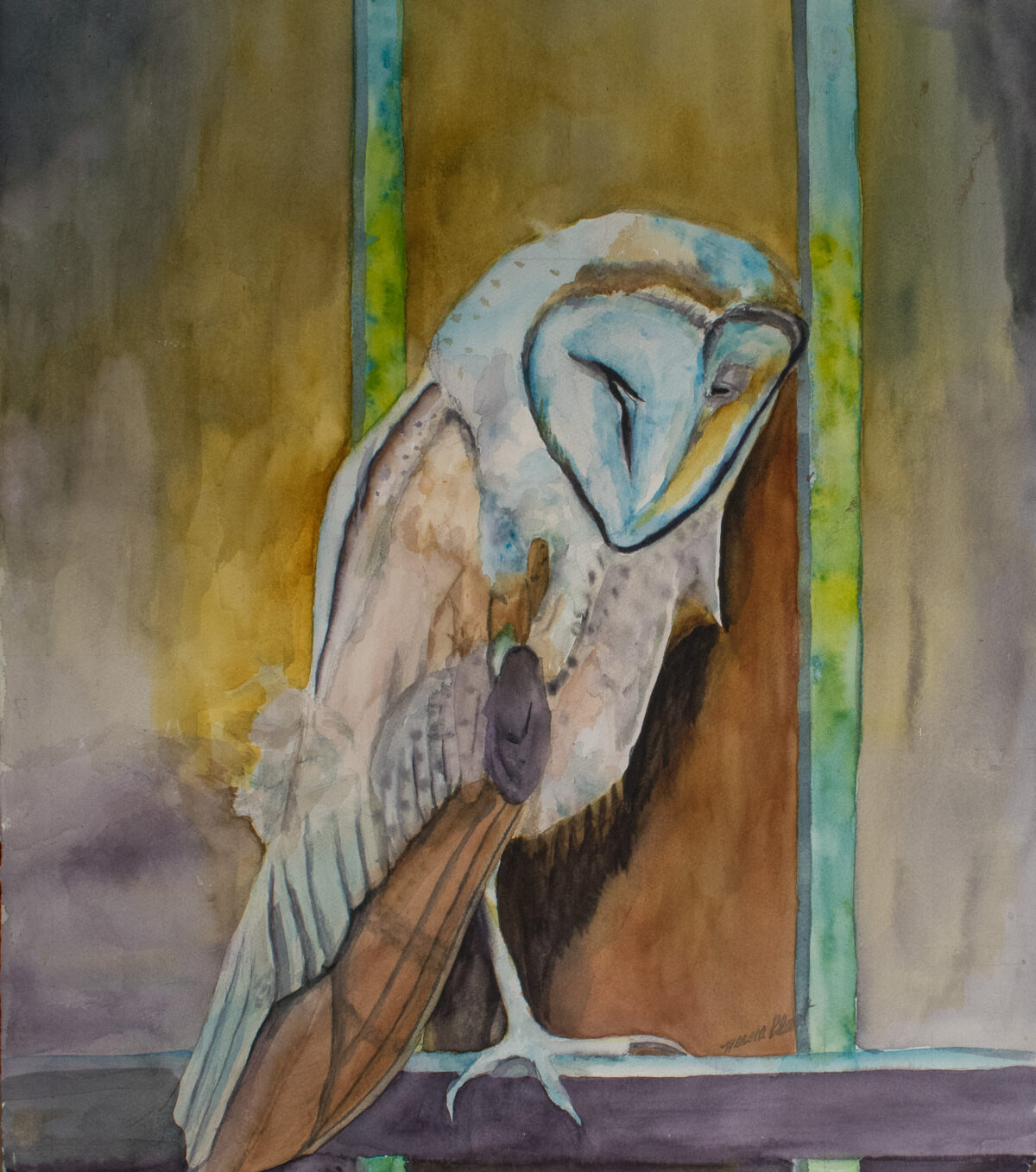 Second Chance Owl